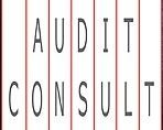 Logo AUDIT CONSULT, a.s.