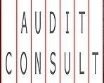 Logo společnosti AUDIT CONSULT, a.s.